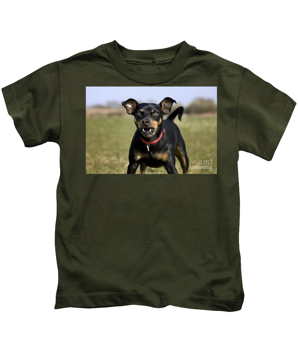 Mammal Kids T-Shirt featuring the photograph 110506p188 by Arterra Picture Library