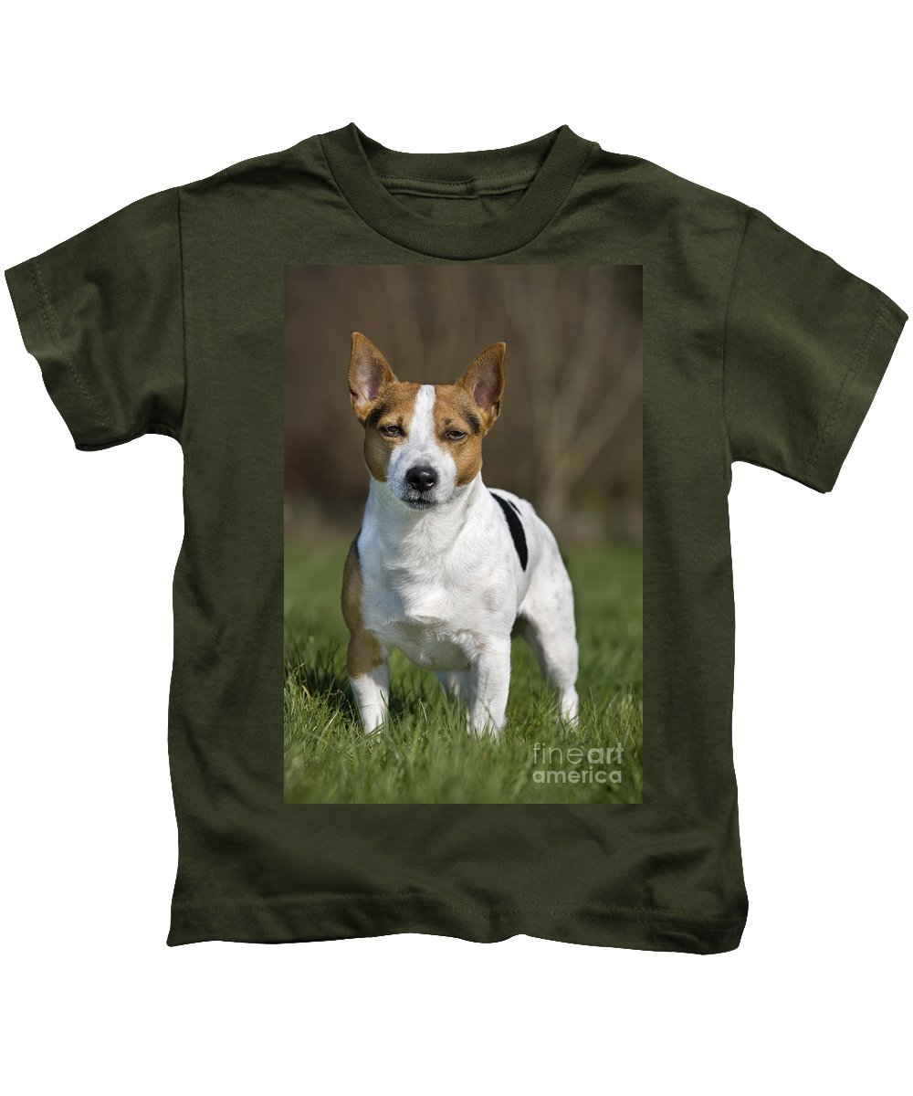 Mammal Kids T-Shirt featuring the photograph 110506p196 by Arterra Picture Library