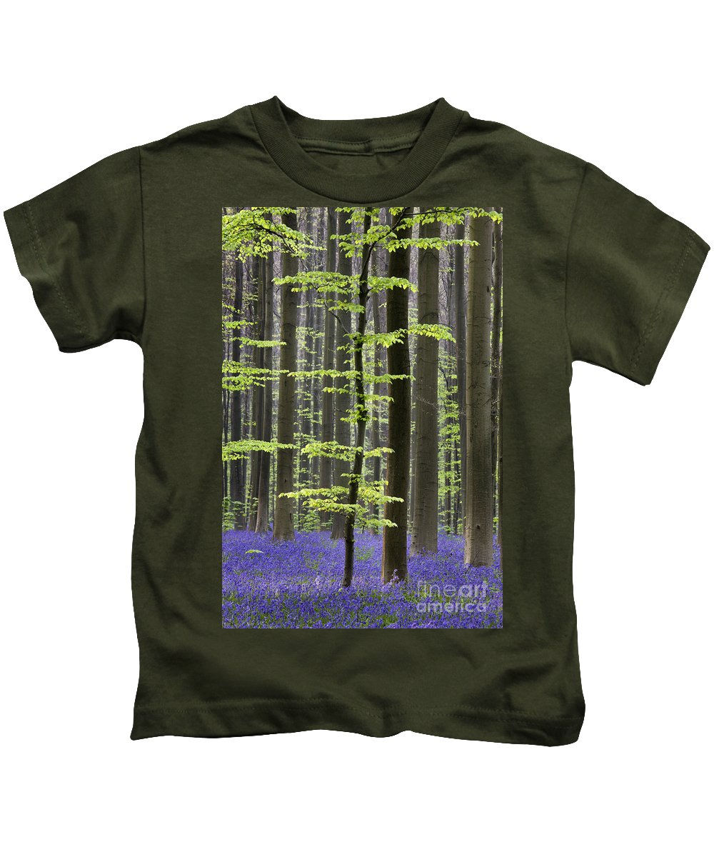 Bluebells Kids T-Shirt featuring the photograph 110506p244 by Arterra Picture Library