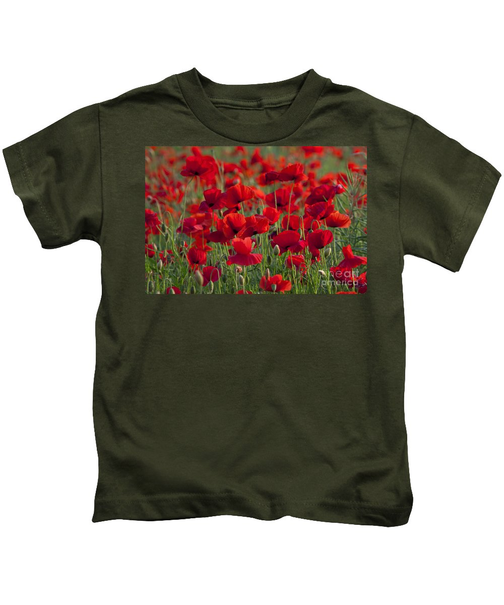 Papaver Rhoeas Kids T-Shirt featuring the photograph 111216p031 by Arterra Picture Library