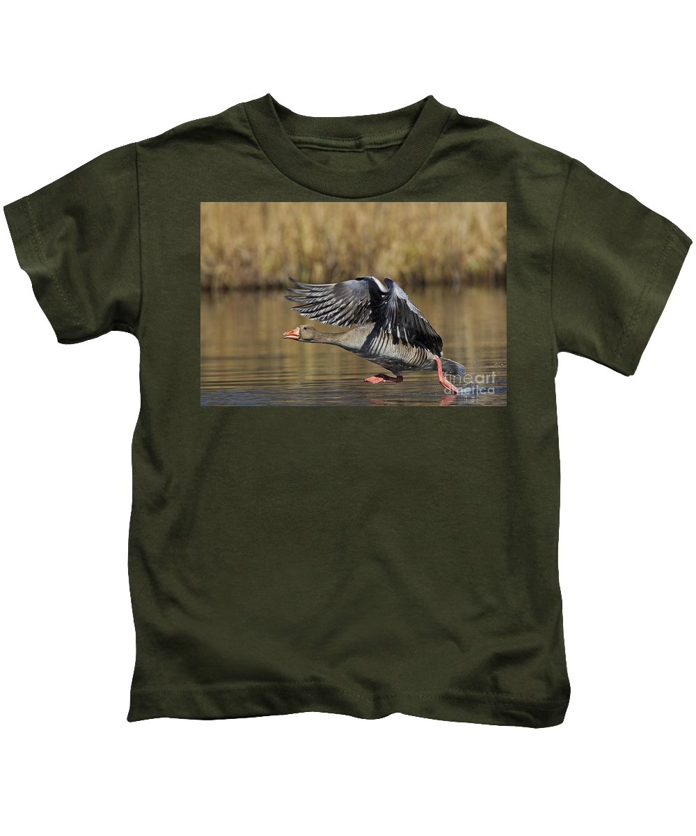Greylag Goose Kids T-Shirt featuring the photograph 111216p036 by Arterra Picture Library