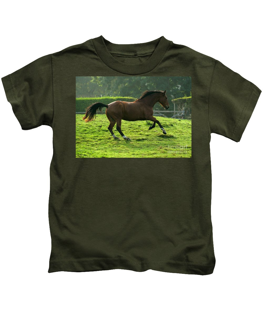 Grey Horse Kids T-Shirt featuring the photograph The Bay Horse by Angel Ciesniarska