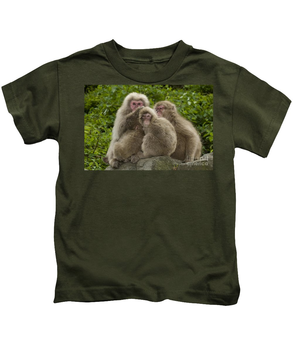 Asia Kids T-Shirt featuring the photograph Snow Monkey, Japan by John Shaw