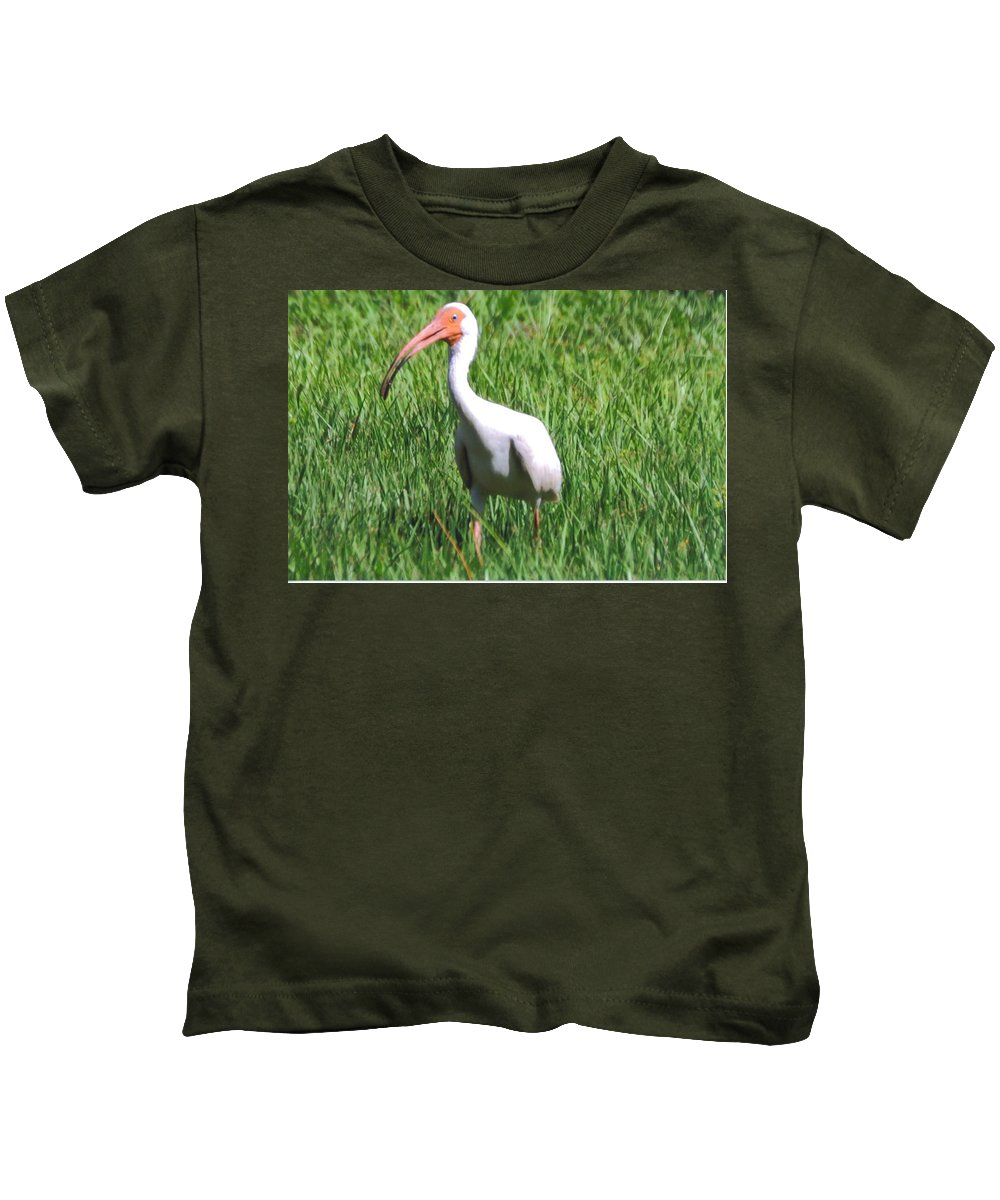 Eating Bugs In My Backyard Kids T-Shirt featuring the photograph White Ibis by Robert Floyd