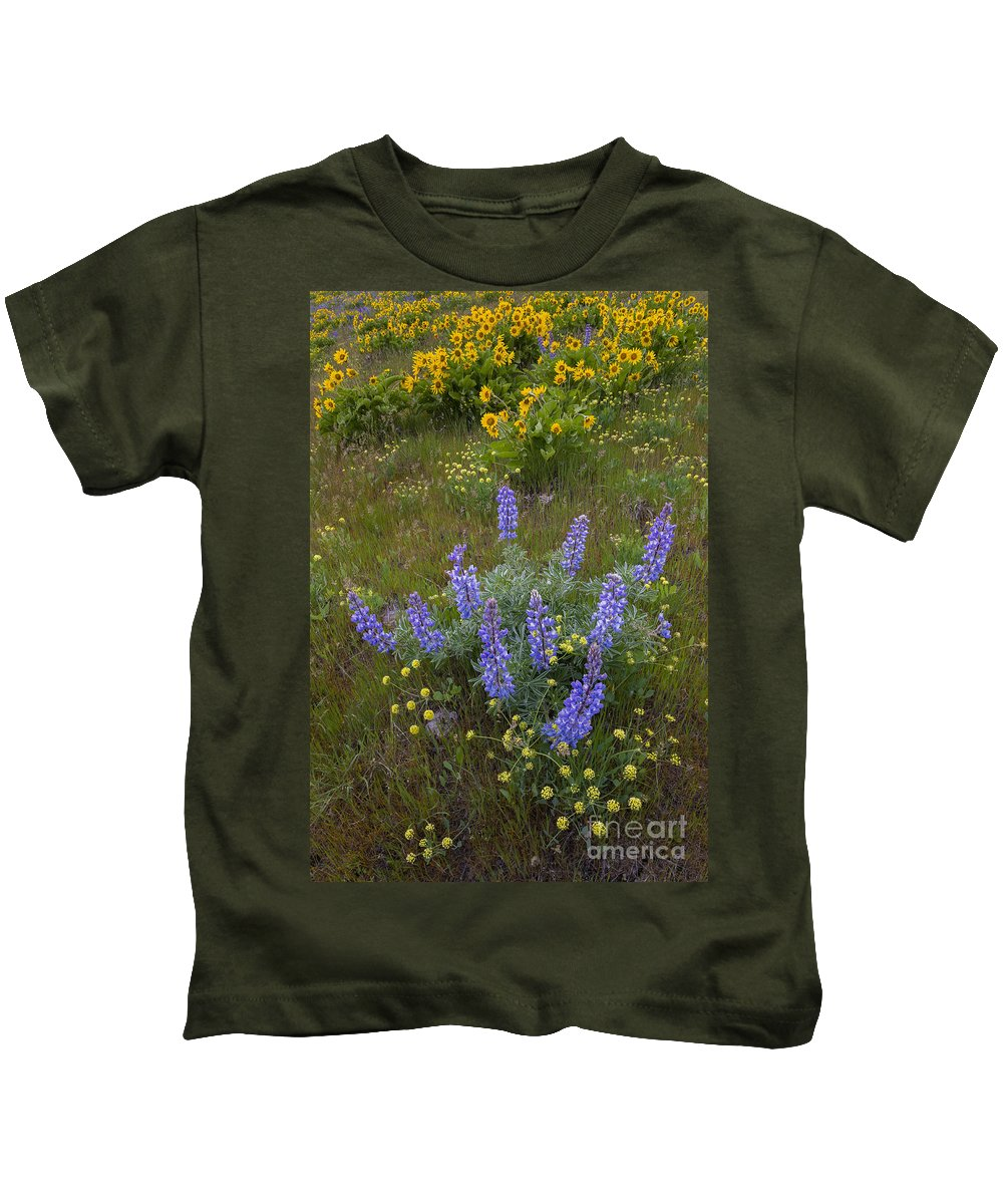 America Kids T-Shirt featuring the photograph Arrowleaf Balsamroot And Lupine by John Shaw
