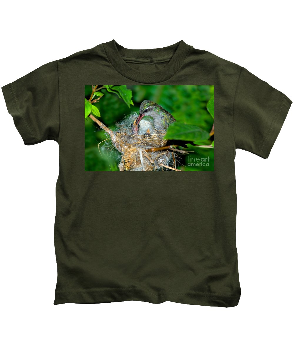 Cynanthus Latirostris Kids T-Shirt featuring the photograph Broad-billed Hummingbird And Young by Anthony Mercieca