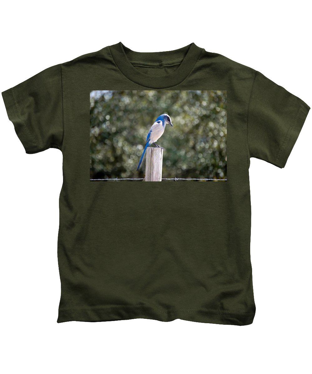 Animal Kids T-Shirt featuring the photograph Florida Scrub Jay by Rich Leighton