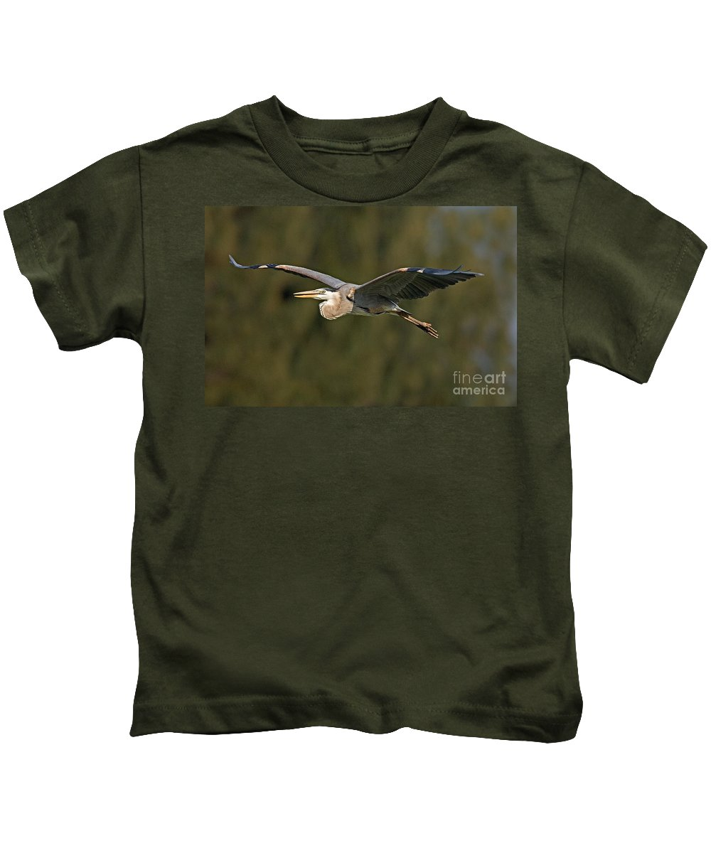 Animal Kids T-Shirt featuring the photograph Great Blue Heron by Anthony Mercieca