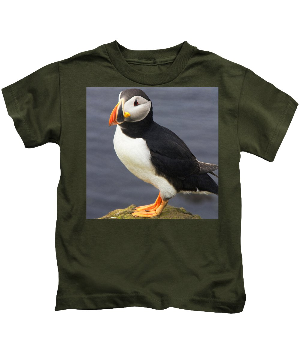 Iceland Kids T-Shirt featuring the photograph Iceland Puffin by For Ninety One Days