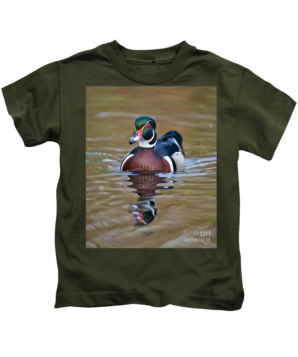 Michael Cummings Kids T-Shirt featuring the photograph Male Wood Duck by Michael Cummings