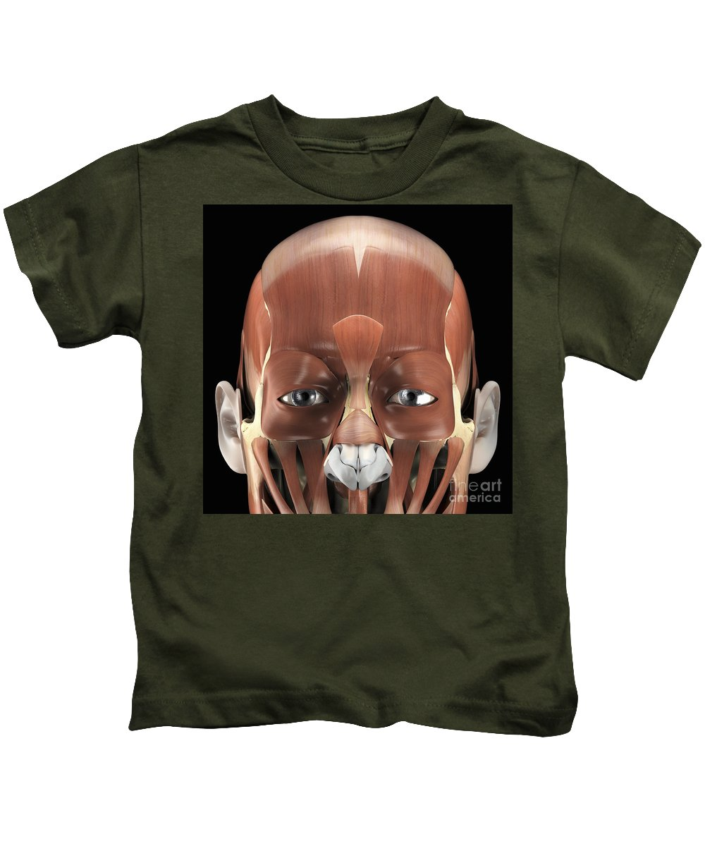 Muscular System Kids T-Shirt featuring the photograph Muscles Of The Face by Science Picture Co