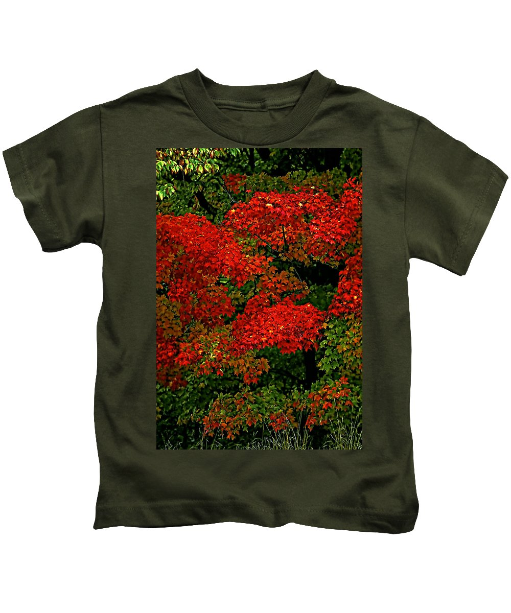 Tree Kids T-Shirt featuring the photograph Show Off by Steve Harrington