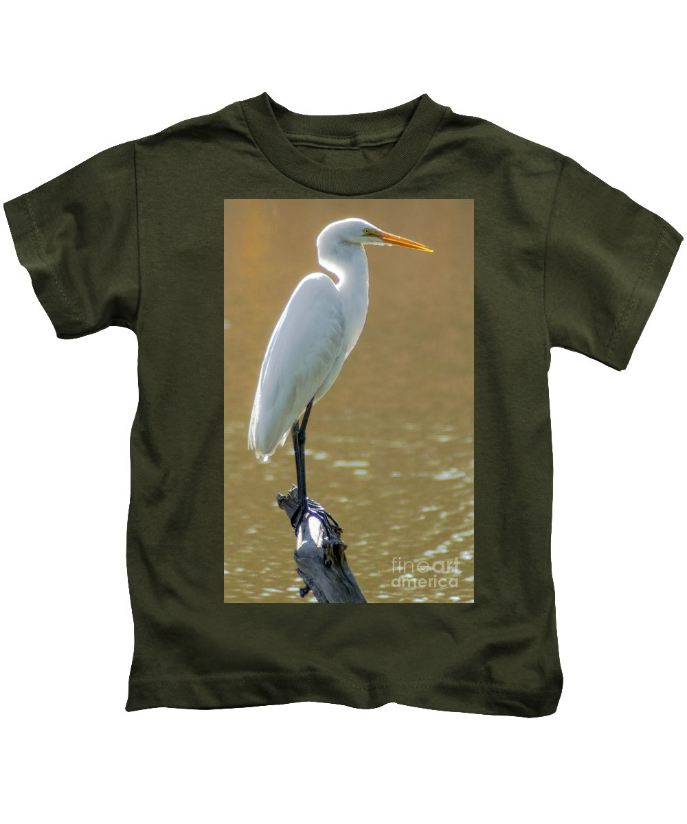 White Heron Kids T-Shirt featuring the photograph Magnolia White Heron by Dale Powell