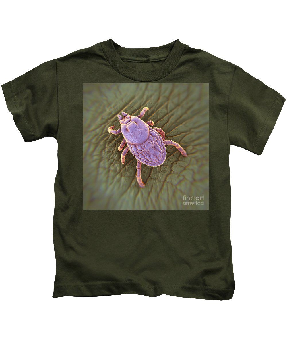 Hematophagous Kids T-Shirt featuring the photograph Tick Ixodes by Science Picture Co