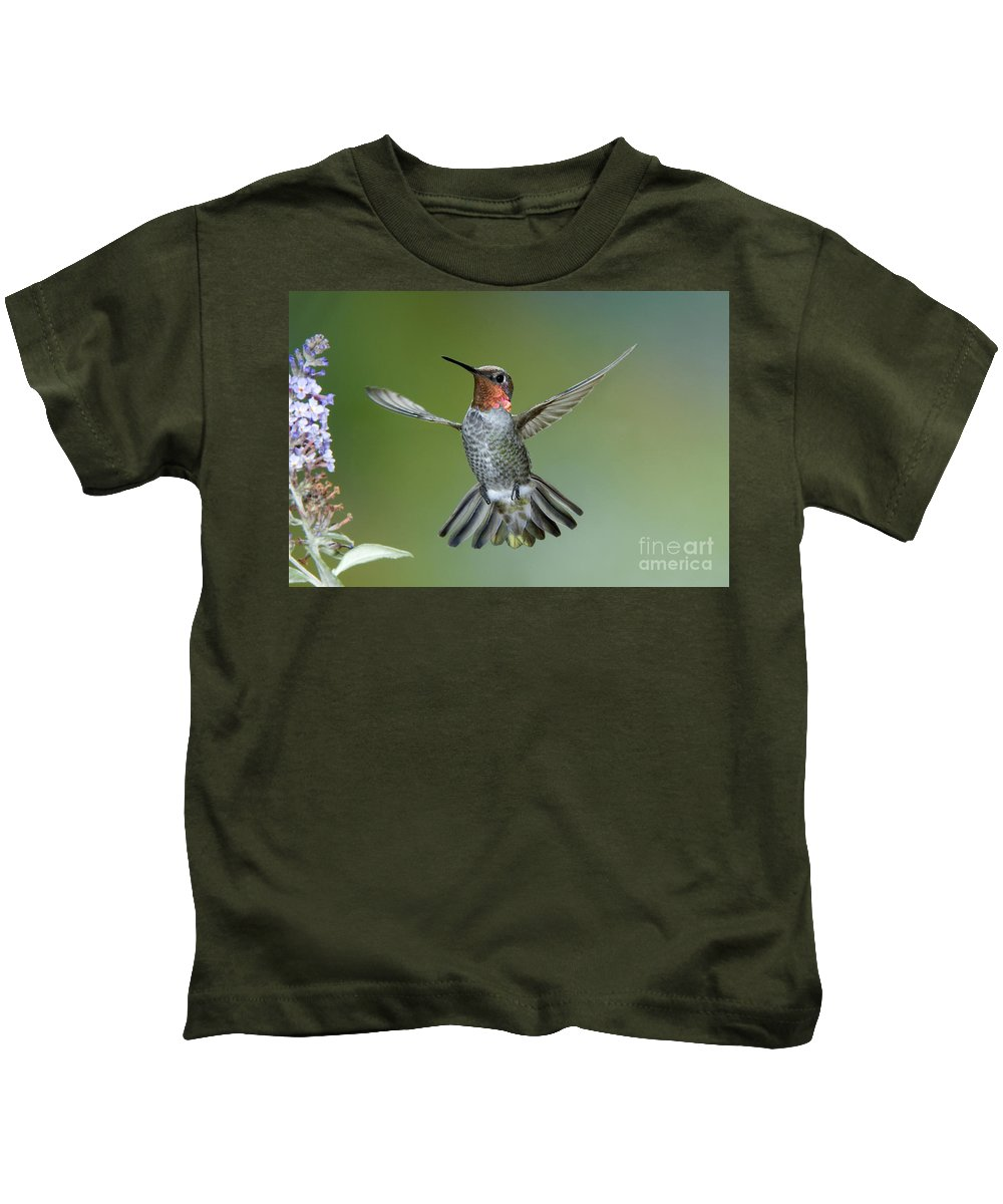 Calypte Anna Kids T-Shirt featuring the photograph Annas Hummingbird by Anthony Mercieca