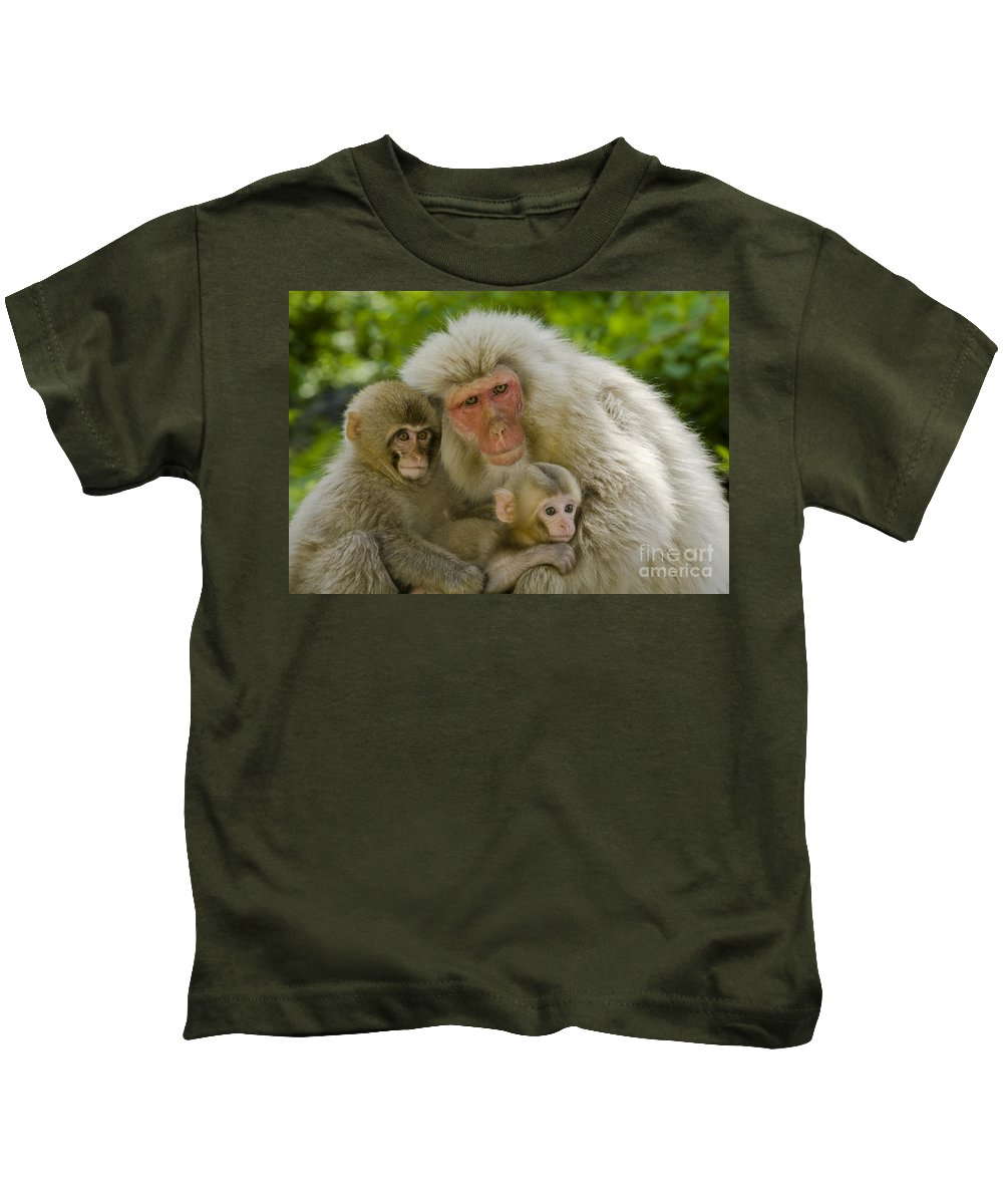 Asia Kids T-Shirt featuring the photograph Snow Monkeys, Japan by John Shaw