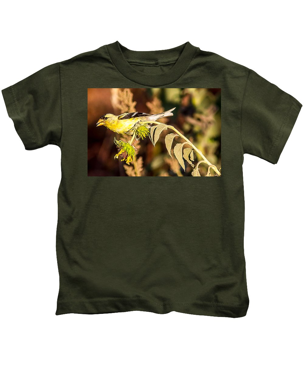 Gold Finch Outdoors Wildlife Nature Small Birds All Prints Are Available In Prints Kids T-Shirt featuring the photograph Gold Finch by Brian Williamson