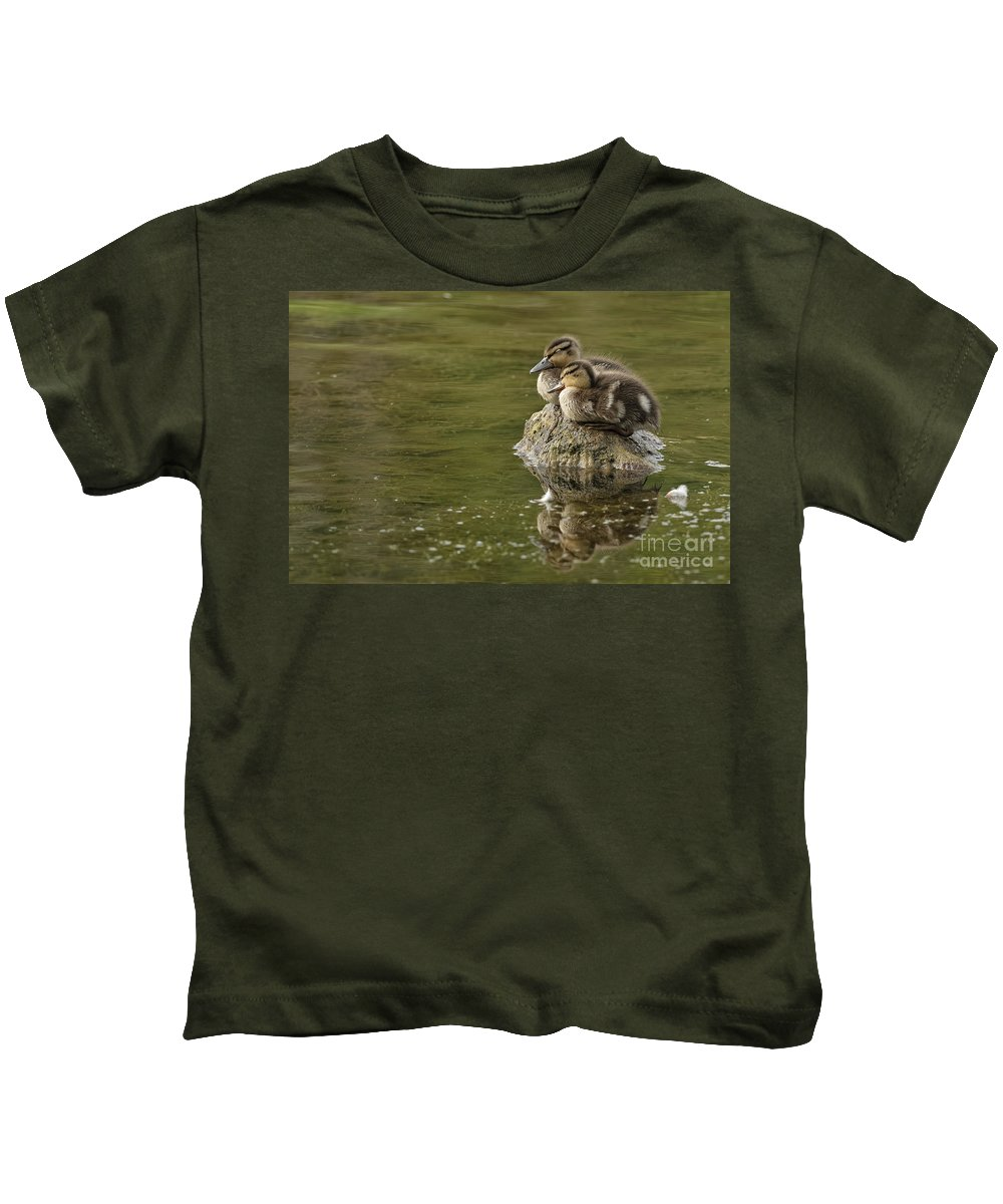 Michael Cummings Kids T-Shirt featuring the photograph Mallard Duckling by Michael Cummings