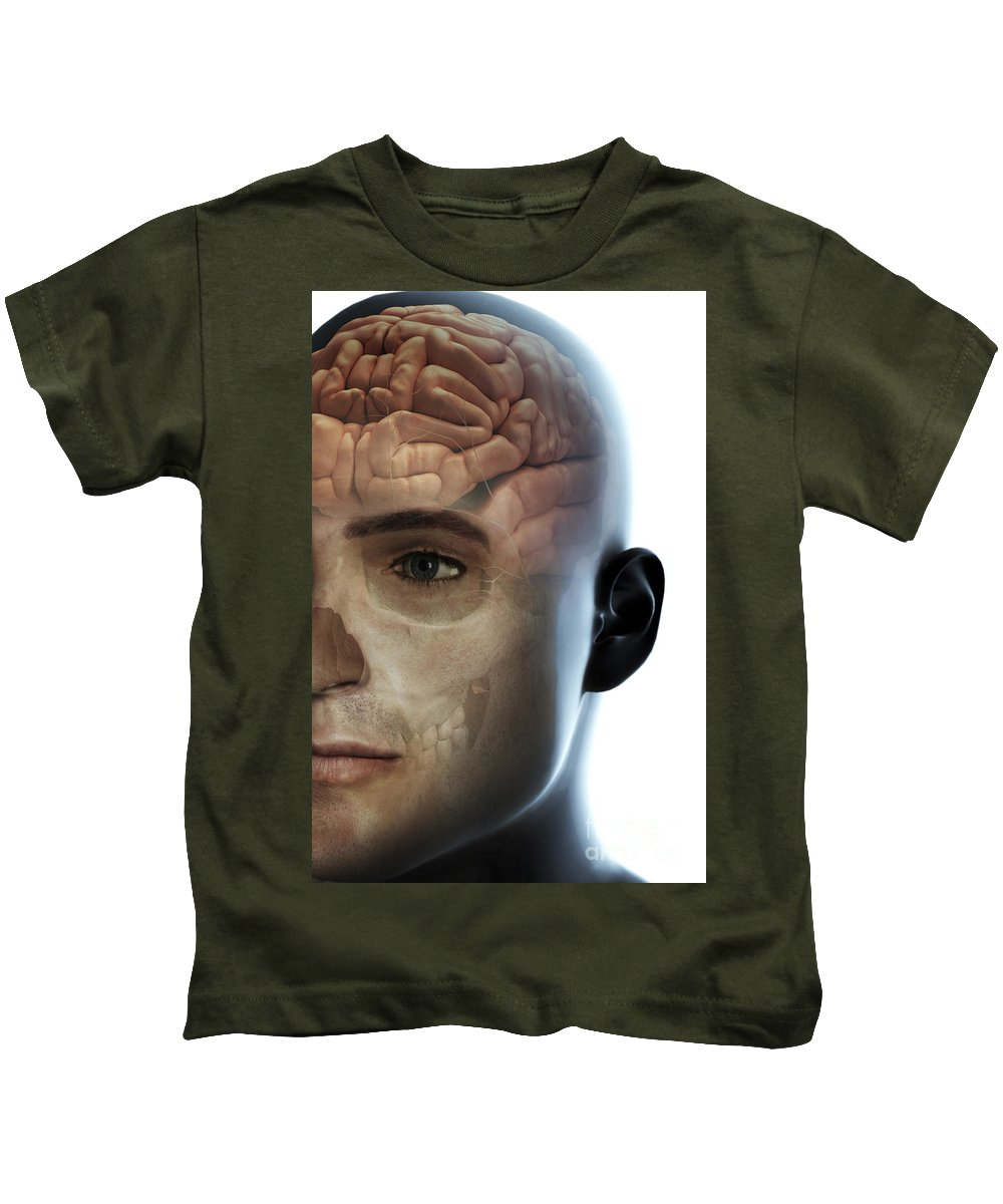 Frontal Lobe Kids T-Shirt featuring the photograph Human Brain by Science Picture Co