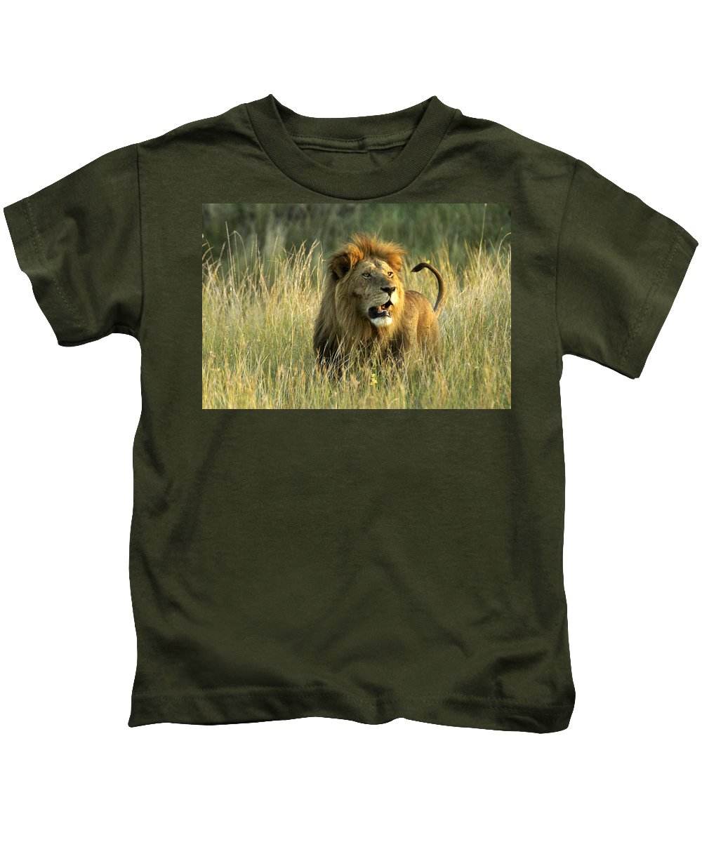 Lion Kids T-Shirt featuring the photograph King Of The Savanna by Michele Burgess