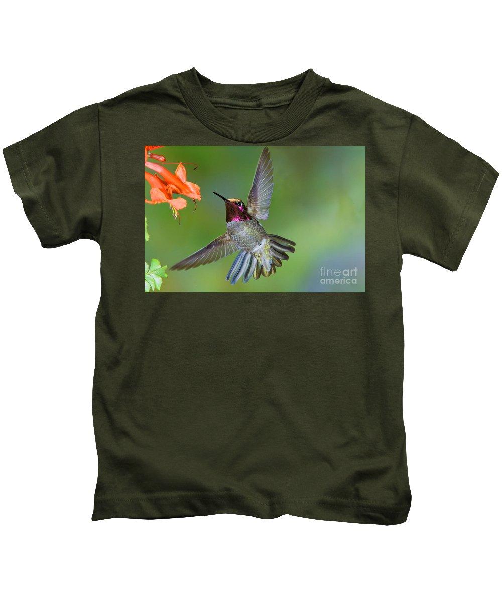 Animal Kids T-Shirt featuring the photograph Annas Hummingbird by Anthony Mercieca