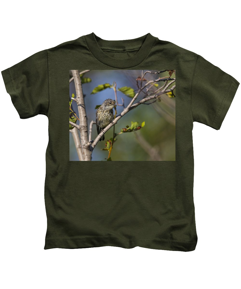 Doug Lloyd Kids T-Shirt featuring the photograph Yellowrumped Warbler by Doug Lloyd