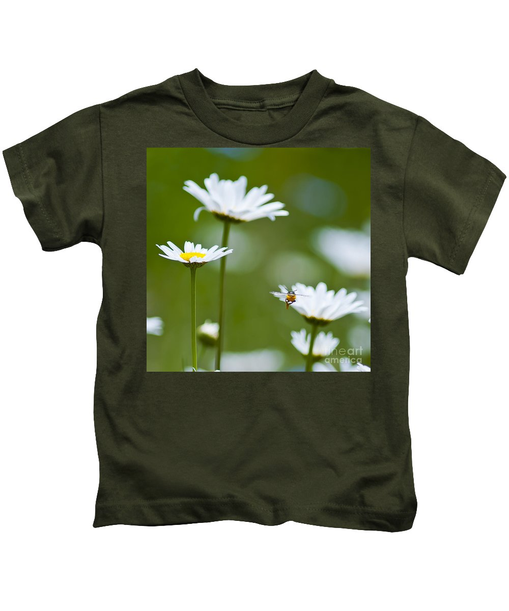 Bee Kids T-Shirt featuring the photograph A Bee's World by Beth Riser