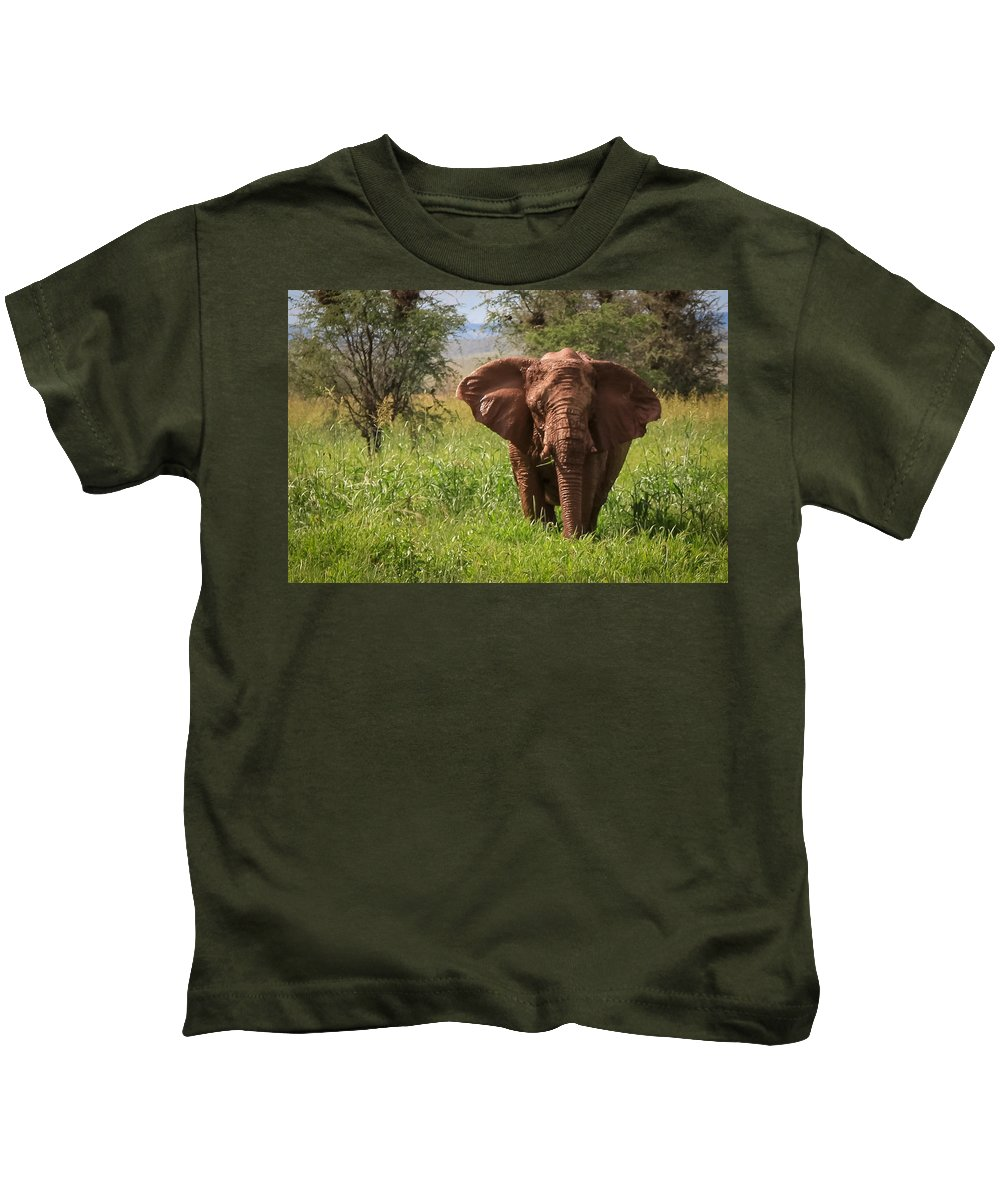 Namibia Kids T-Shirt featuring the photograph African Desert Elephant by Gregory Daley MPSA