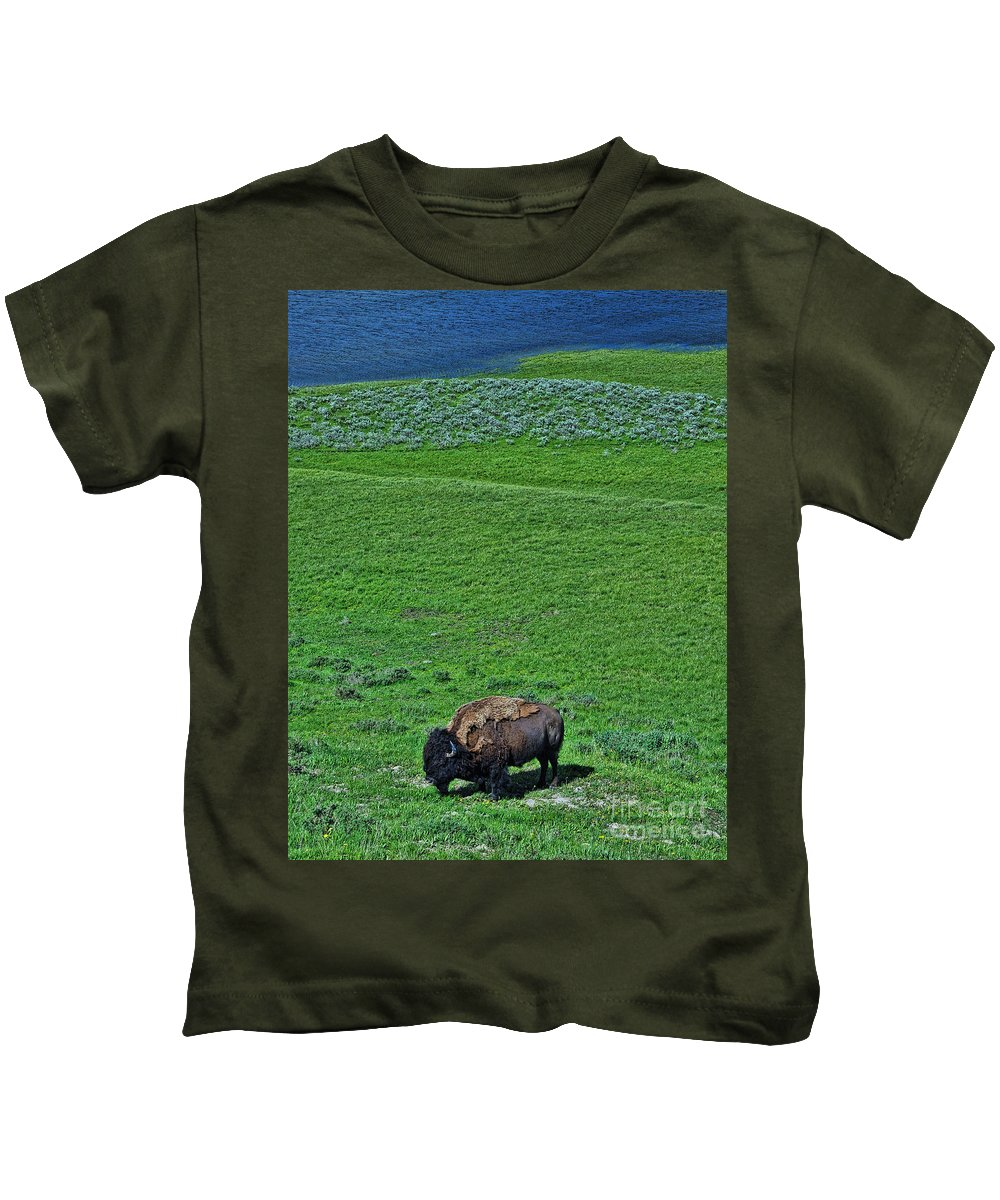American Bison Kids T-Shirt featuring the photograph American Bison by Allen Beatty