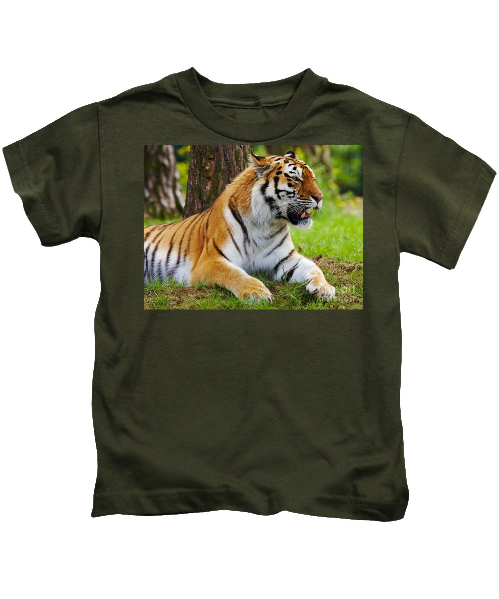 Tiger Kids T-Shirt featuring the photograph Amur Tiger by Nick Biemans