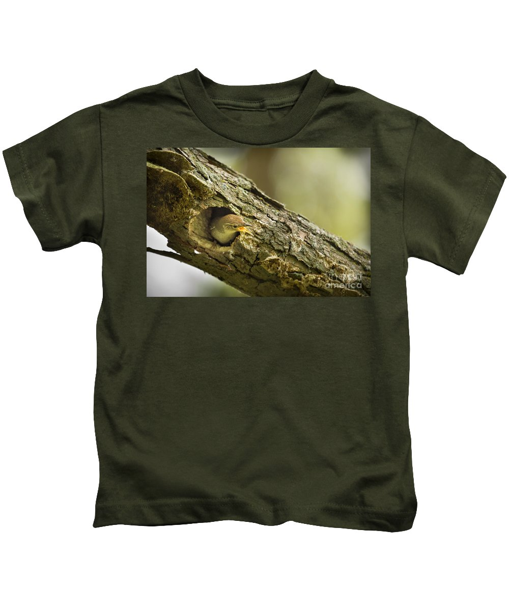Birds Kids T-Shirt featuring the photograph And Stay Out by Timothy Hacker