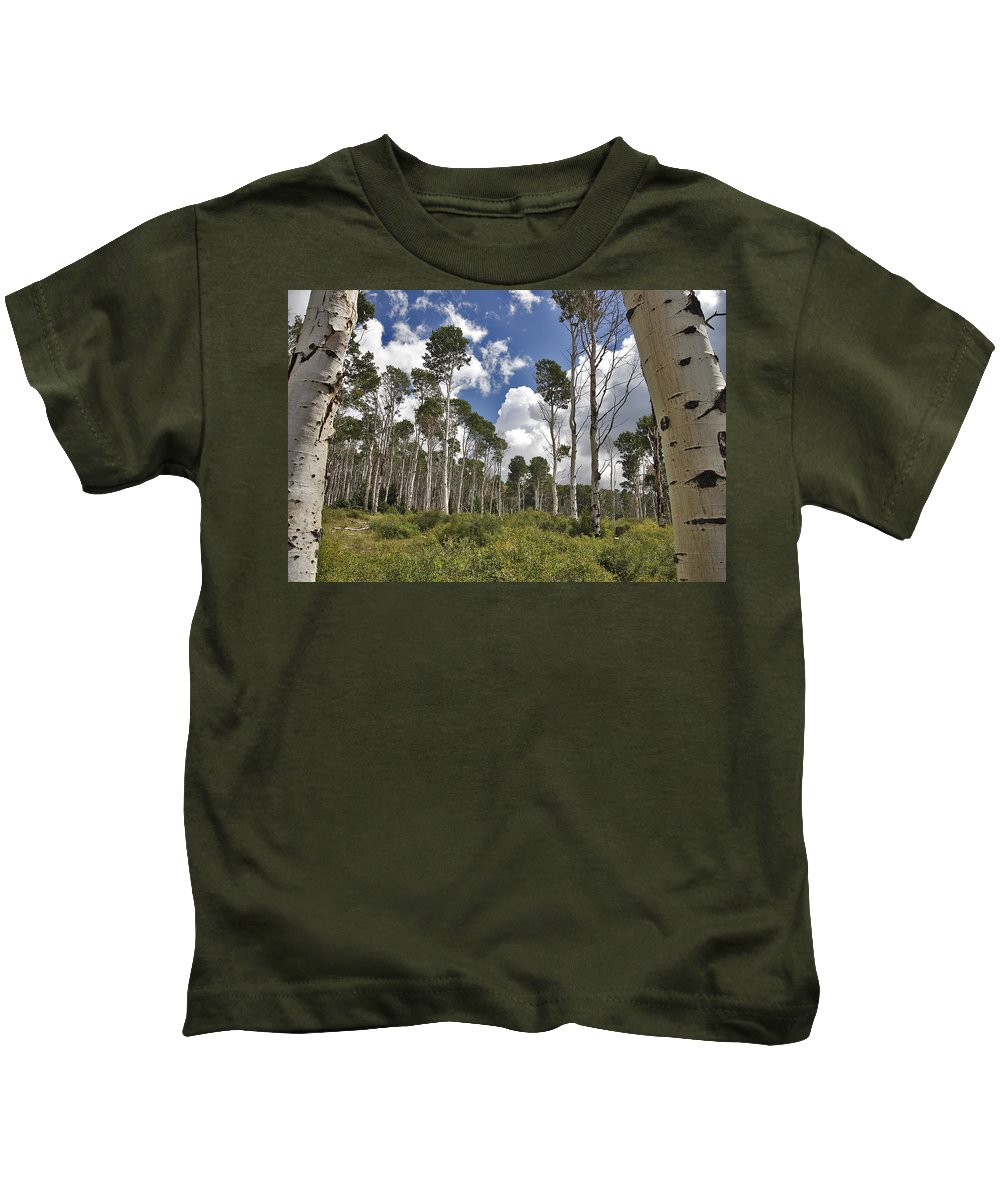 3scape Kids T-Shirt featuring the photograph Aspen Grove by Adam Romanowicz