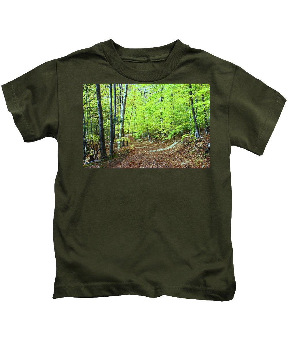 Eagle Rock Reservation Kids T-Shirt featuring the photograph Autumn Gold 3 by Allen Beatty