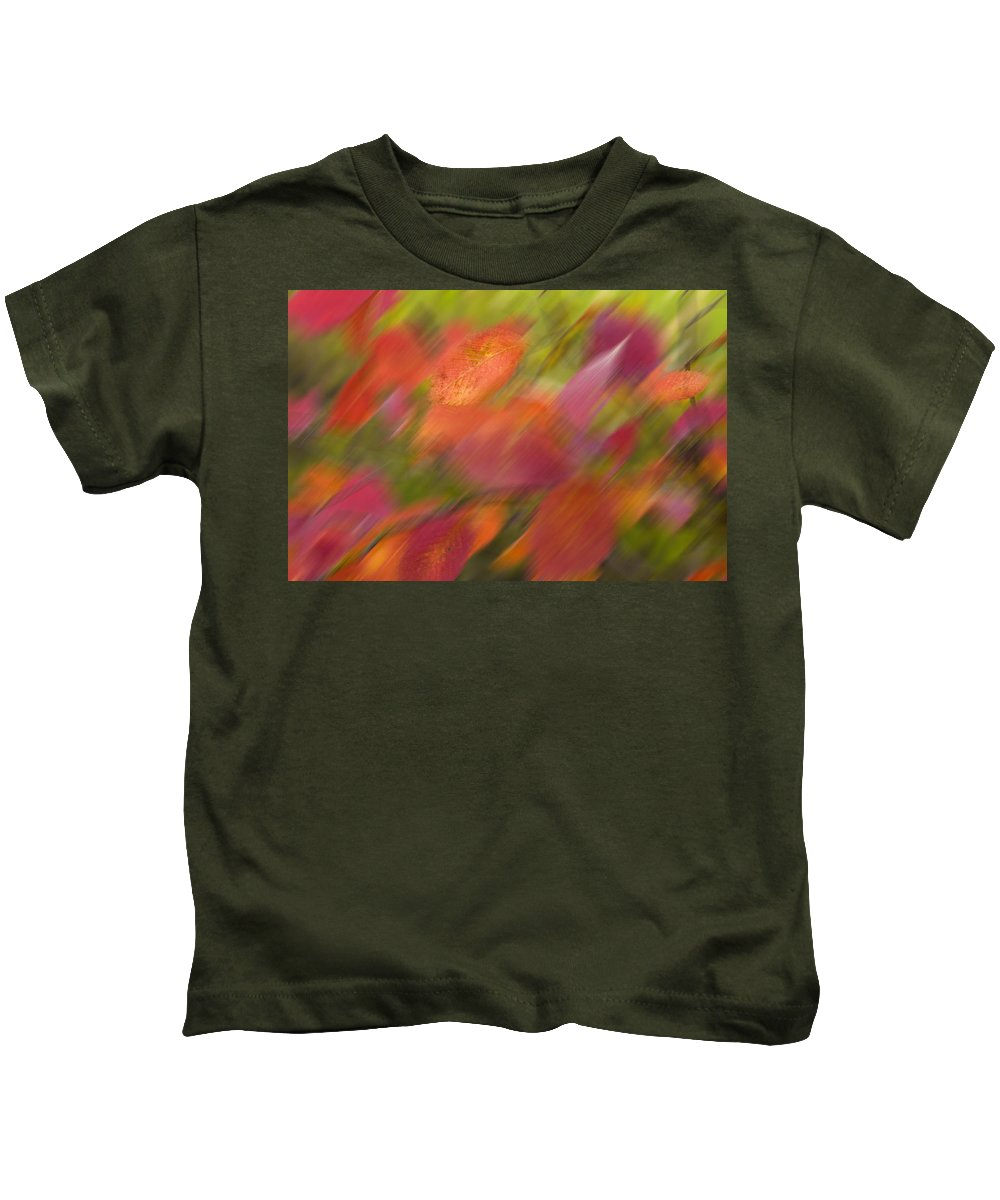 Autumn Leaves.tree Kids T-Shirt featuring the photograph Autumn Leaves On The Abstract Background by  larisa Fedotova