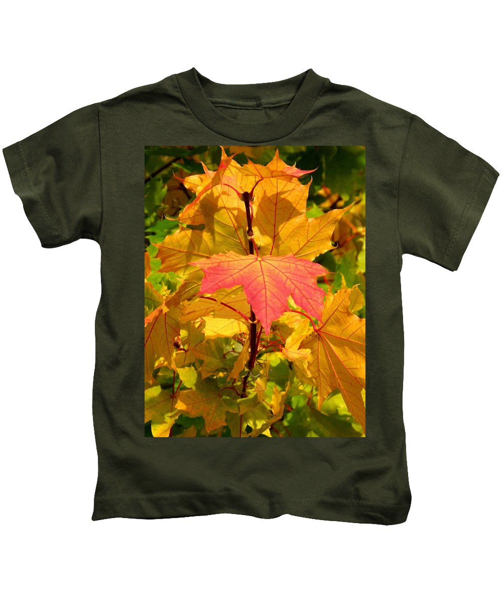 Autumn Pigmentation Kids T-Shirt featuring the photograph Autumn Pigmentation by Will Borden