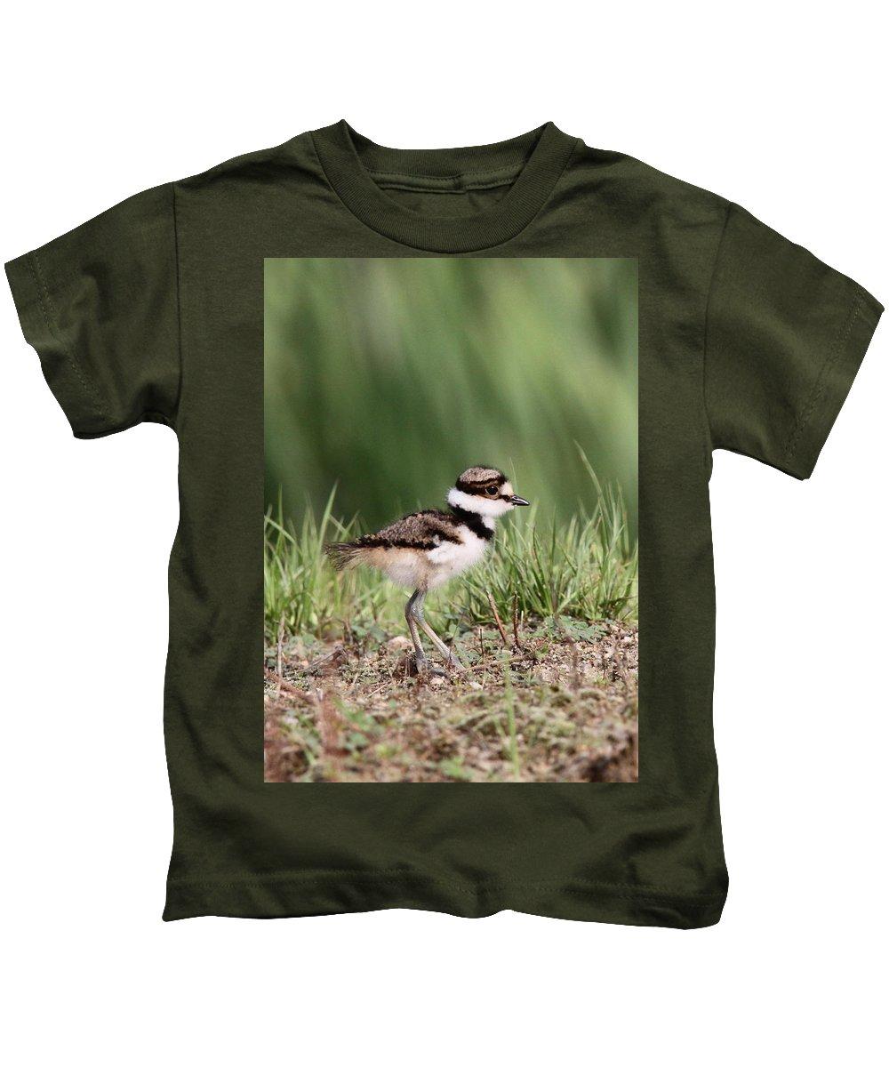 Killdeer Kids T-Shirt featuring the photograph Baby - Bird - Killdeer by Travis Truelove