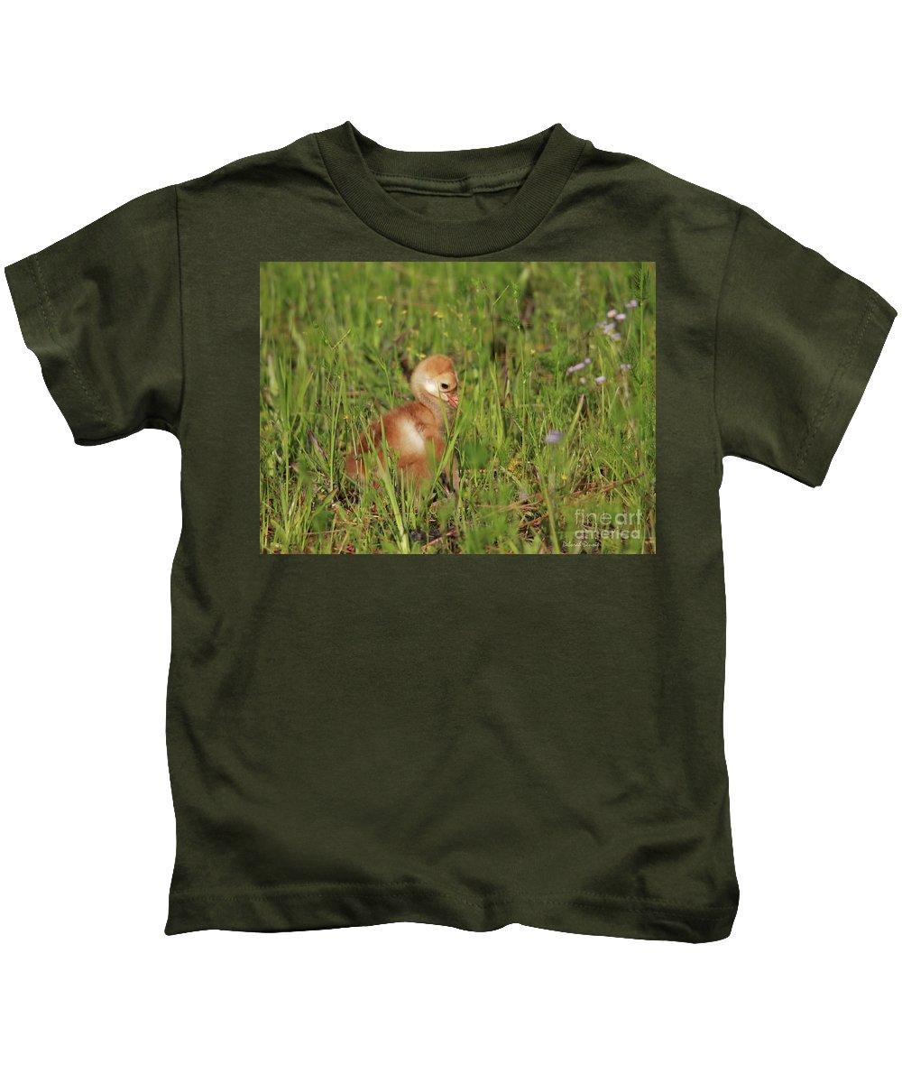 Sandhill Chick Kids T-Shirt featuring the photograph Baby Sandhill Crane Chick by Deborah Benoit