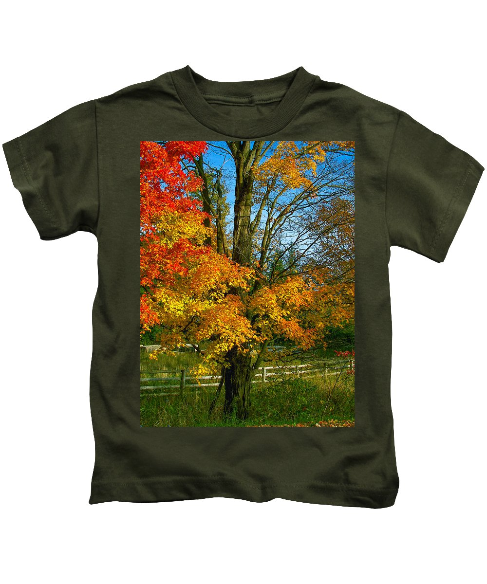 Maples Kids T-Shirt featuring the photograph Back Road Beauty by Steve Harrington