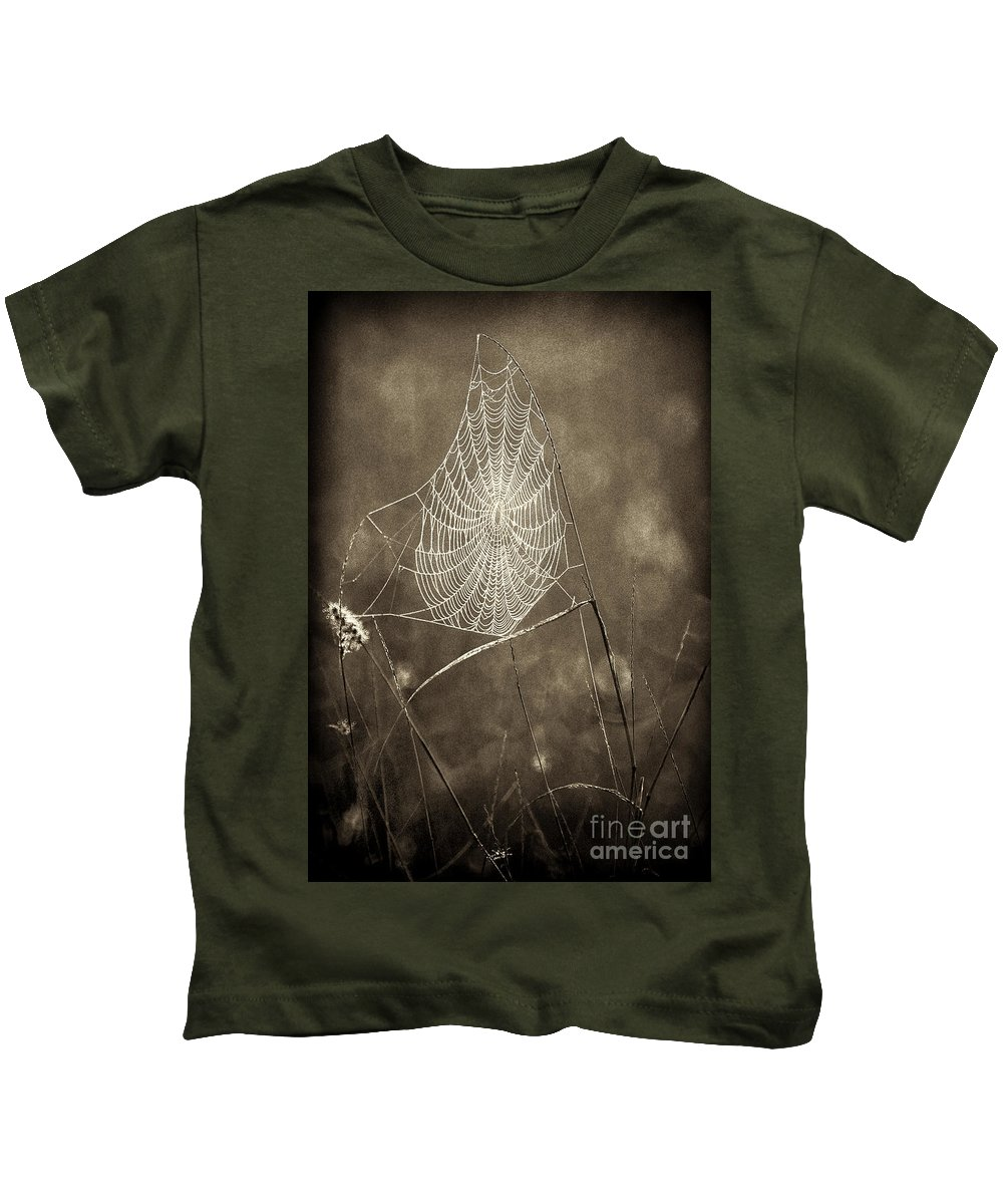 Wildlife Kids T-Shirt featuring the photograph Backlit Spider Web In Sepia Tones by Dave Welling