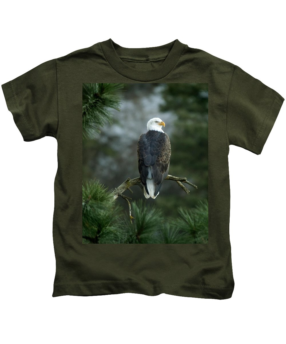 Bald Eagle Kids T-Shirt featuring the photograph Bald Eagle In Tree by Paul DeRocker