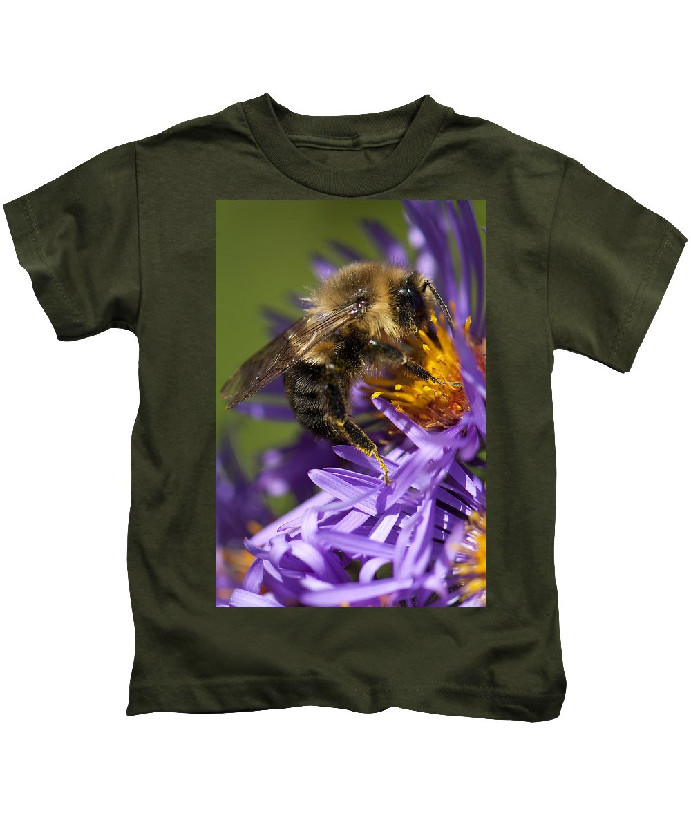 Bee Kids T-Shirt featuring the photograph Be My Bee... by Les Lorek