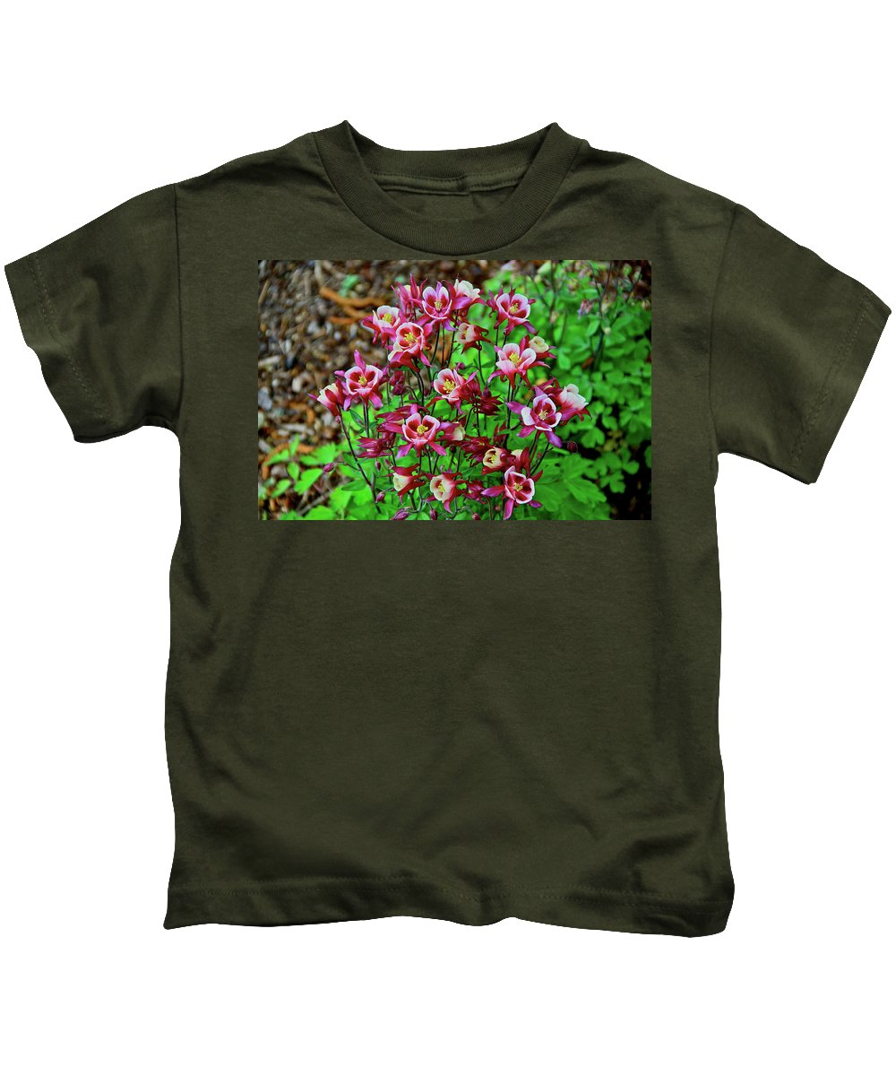 Columbine Kids T-Shirt featuring the photograph Beautiful Columbine  by Ed Riche