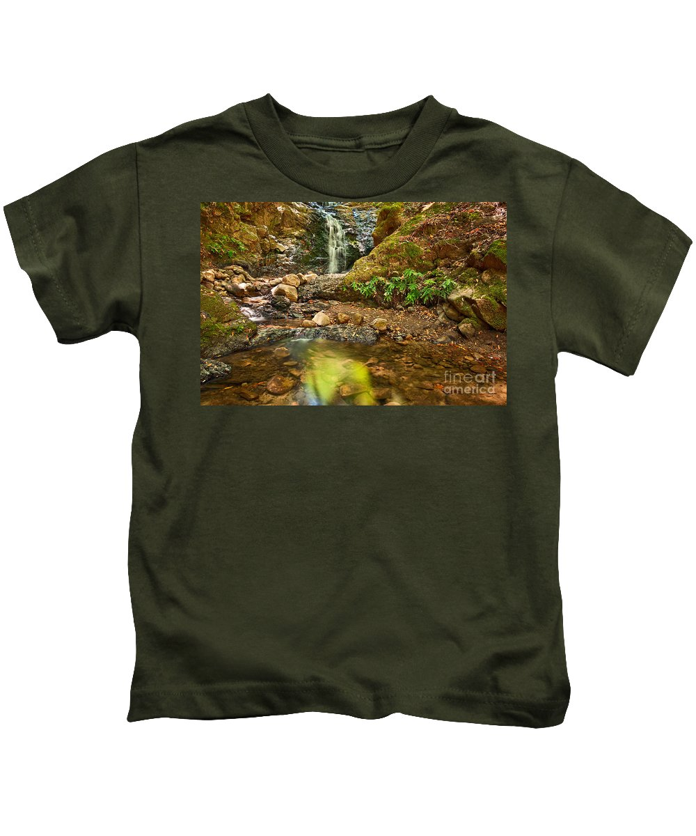 Uvas Canyon County Park; Upper Falls; Waterfall; Waterfalls; Reflection; Pool; Lake; Forest; Fern; Ferns; Secluded; Peaceful; Tranquil; Flow; Flowing; Peaceful Kids T-Shirt featuring the photograph Beautiful View Of Upper Falls Located In Uvas Canyon County Park. by Jamie Pham