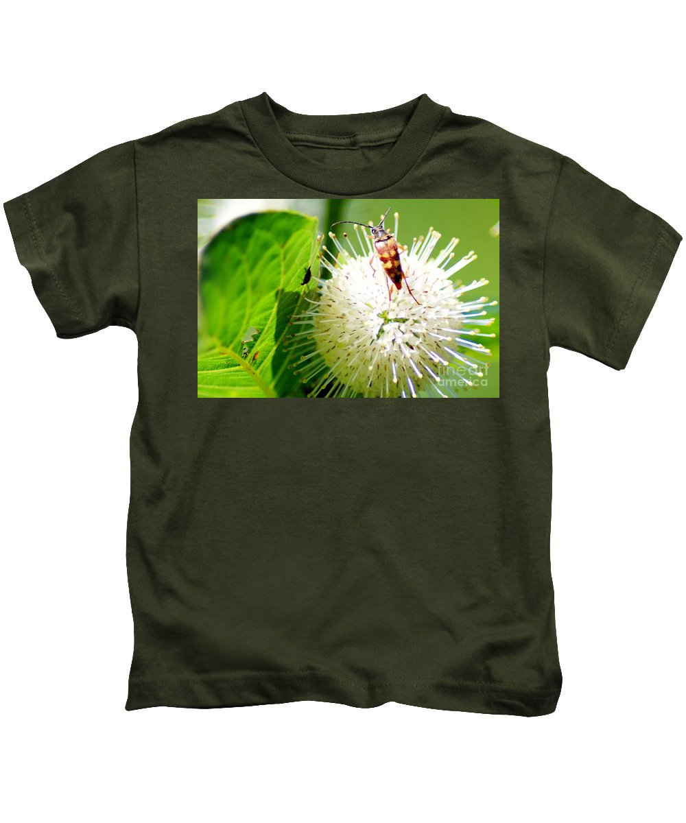 Button Bush Kids T-Shirt featuring the photograph Beetle On Buttonbush by Optical Playground By MP Ray