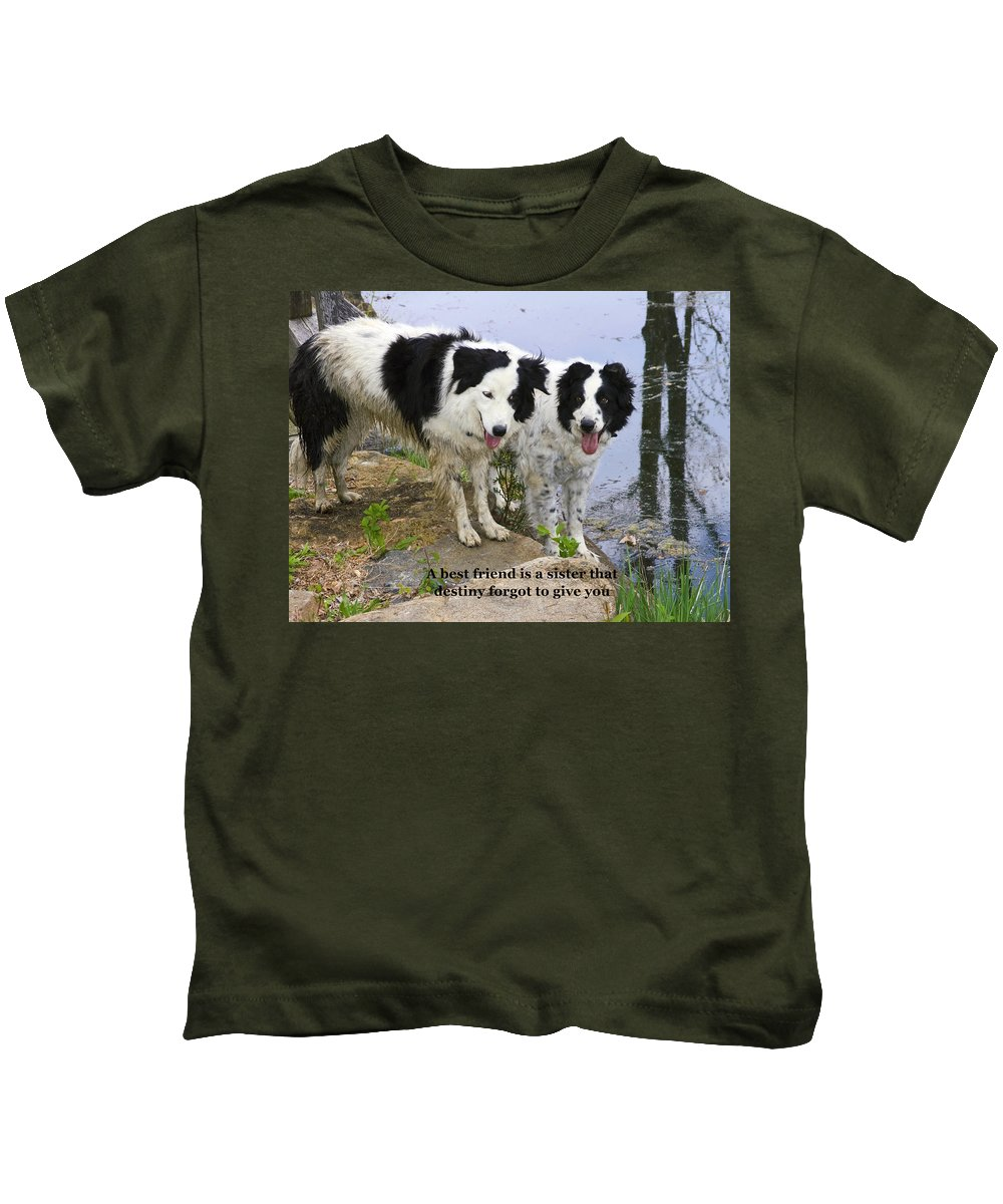 2 Border Collie Dogs Standing Kids T-Shirt featuring the photograph Best Friends by Sally Weigand