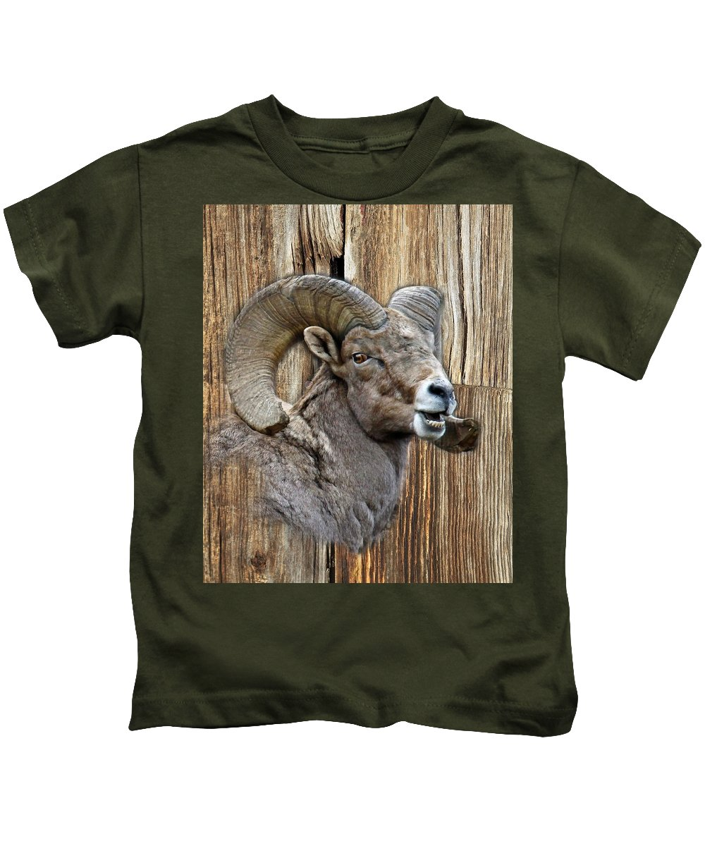 Wildlife Kids T-Shirt featuring the photograph Bighorn Sheep Barnwood by Steve McKinzie