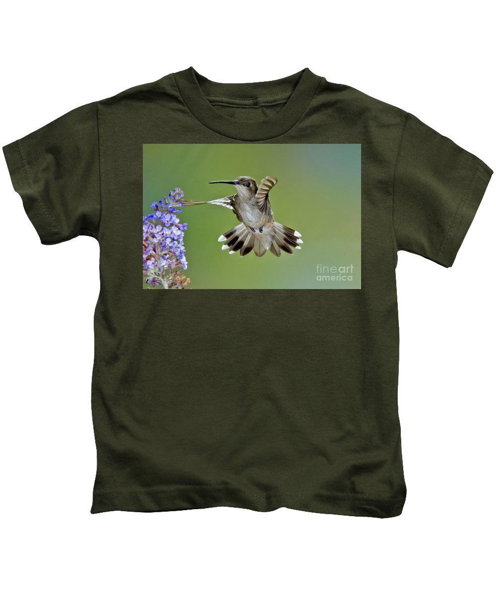 Archilochus Alexandri Kids T-Shirt featuring the photograph Black-chinned Hummingbird by Anthony Mercieca