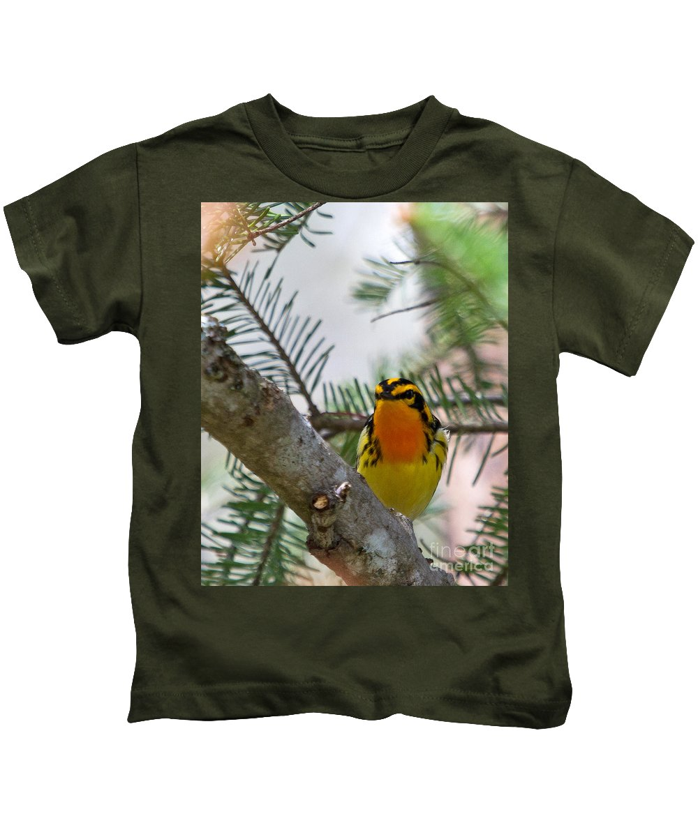 Warbler Kids T-Shirt featuring the photograph Blackburnian Warbler Looking At You by Lloyd Alexander