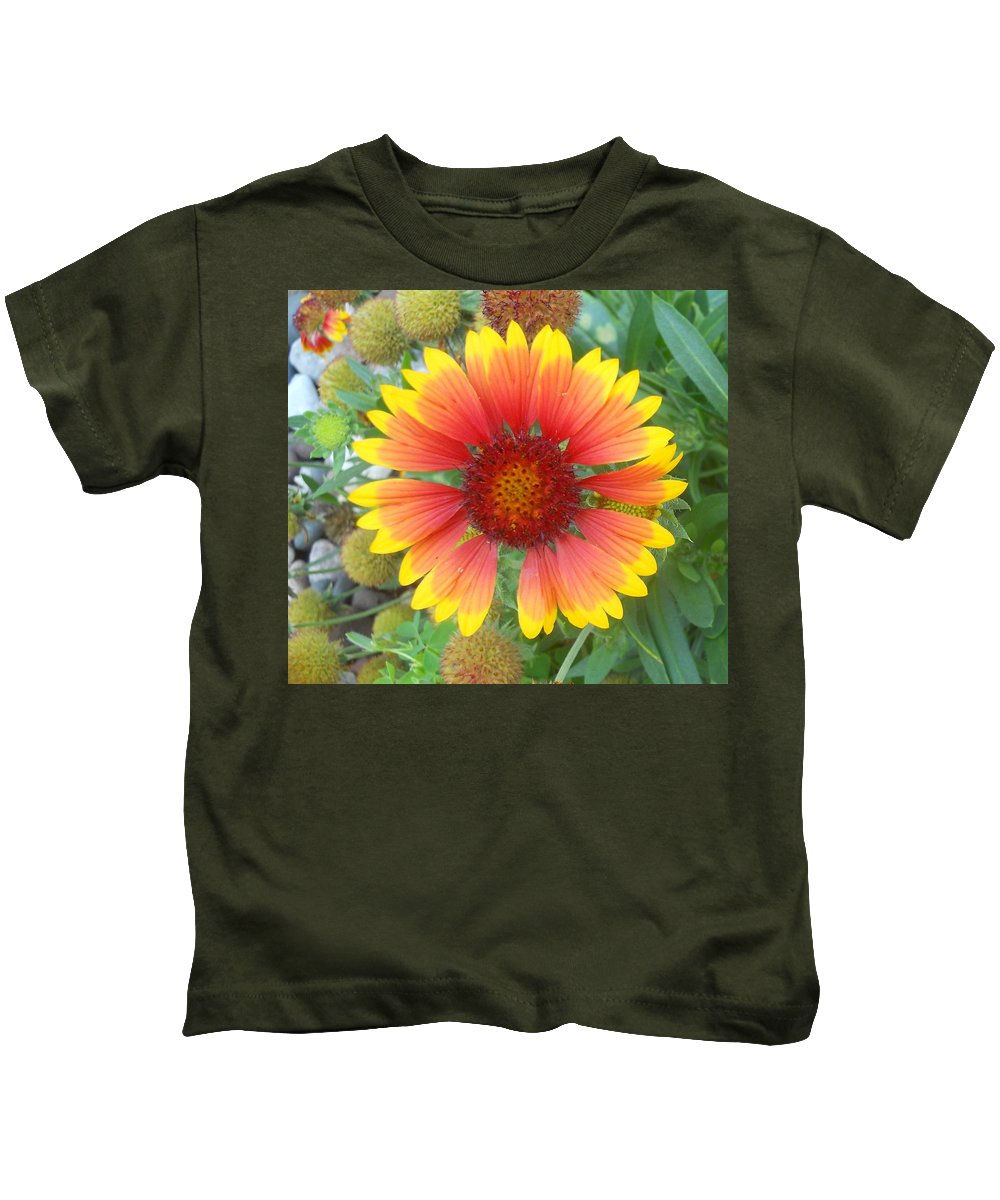 Flowers Kids T-Shirt featuring the photograph Blanket Flower by Coleen Harty