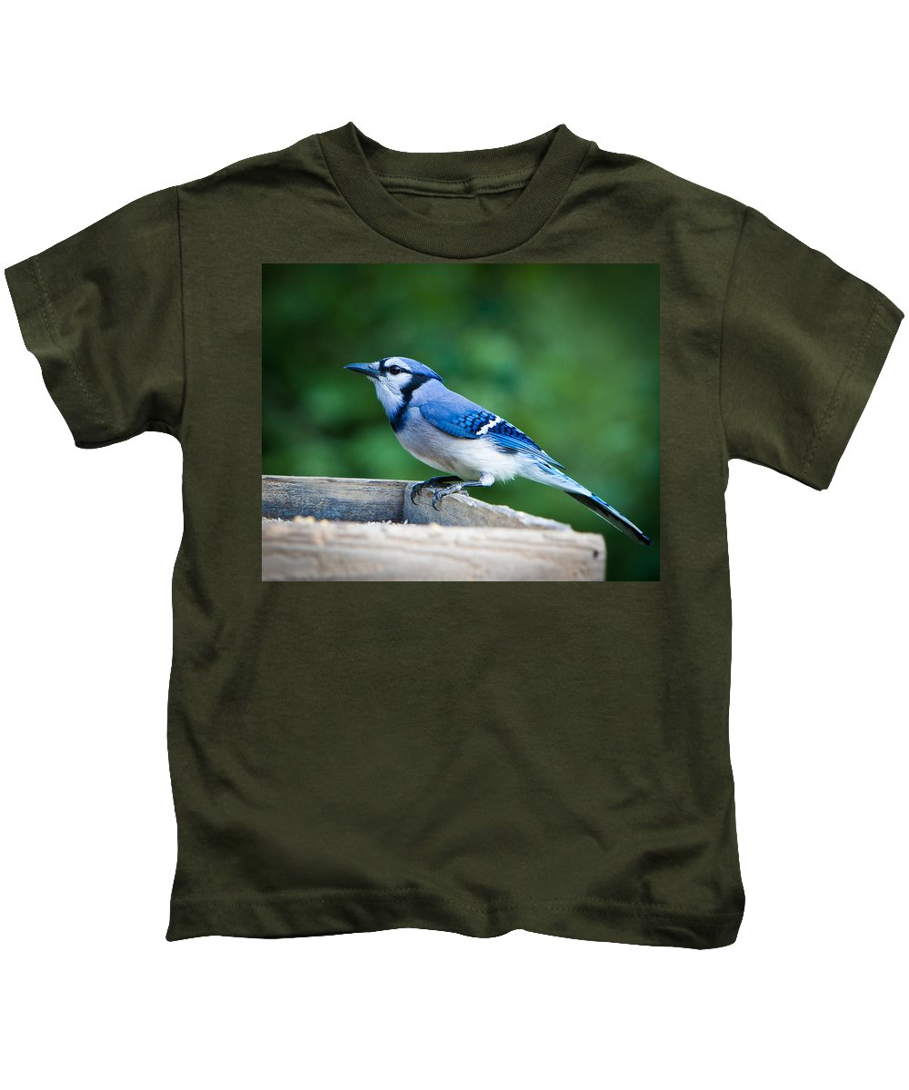 Blue Kids T-Shirt featuring the photograph Blue Jay In Backyard Feeder by Jiayin Ma